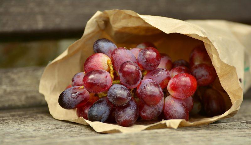 полифенолы винограда