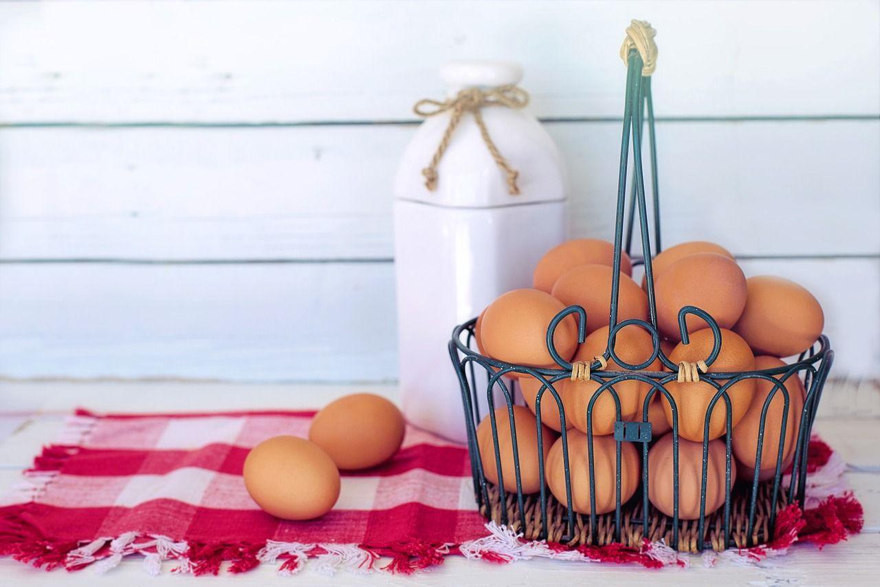 куриные яйца полезны