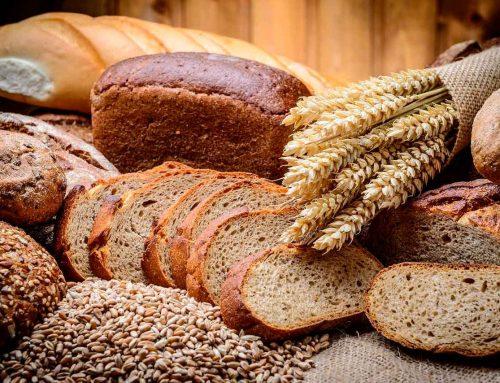 Вред и польза хлеба. А полезен ли хлеб?