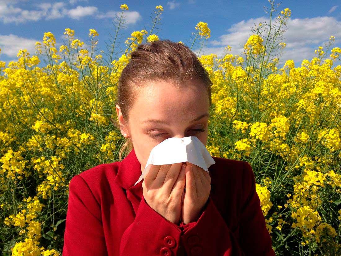 аллергия профилактика